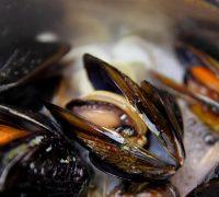 Sopa de marisco con fideos de sepia (1)