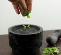 Muslo de pavo al horno (2)