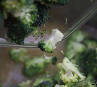 Crema de brócoli y manzana (5)